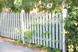 spetsigt staket - Sök på Google