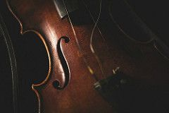 Aimée's Violin (Jen MacNeill) Tags: wood old family broken antique curves s violin repair instrument strings heirloom stringed