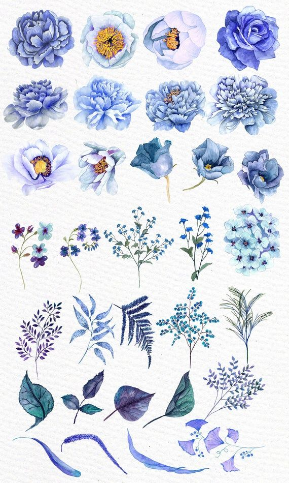 """Blue flowers clipart: """"WATERCOLOR CLIPART"""" Floral clipart Blue watercolor Diy invites Greeting cards Wedding flowers Watercolor flowers"""