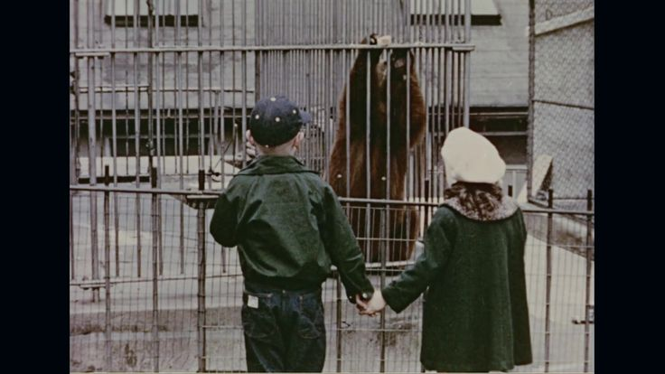 Children watching little Smokey in cage and William Boyd putting off fire - Stock Footage | by 6@PublicDomain