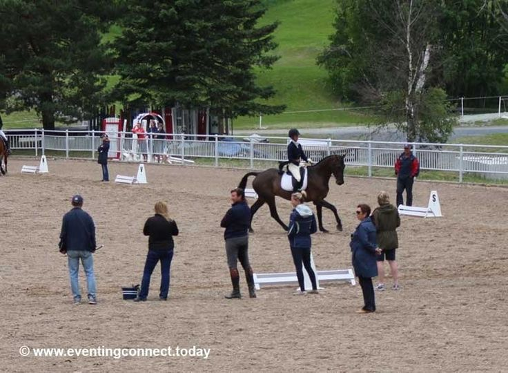 Don't be 'that' rider in the warm-up ring... Follow this advice for a successful and safe warm-up #MustRead