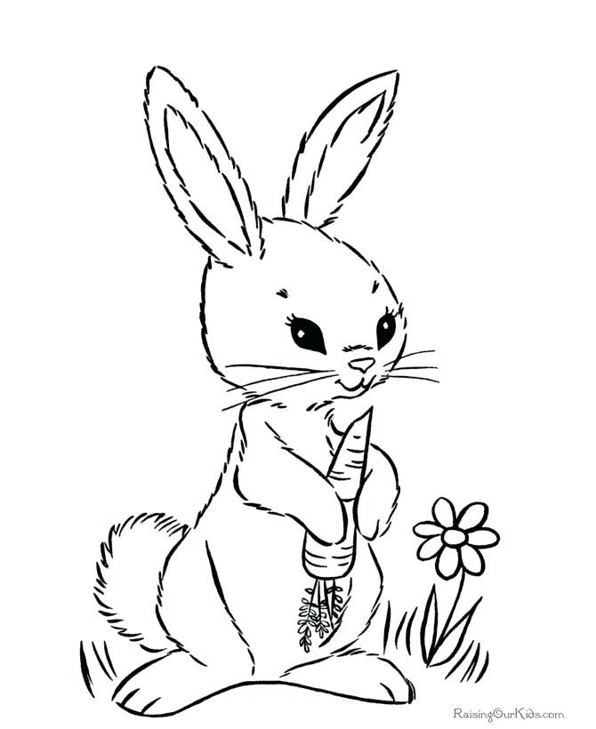 This Is Bunny Coloring Page Images Who Love Spring Flowers Baskets