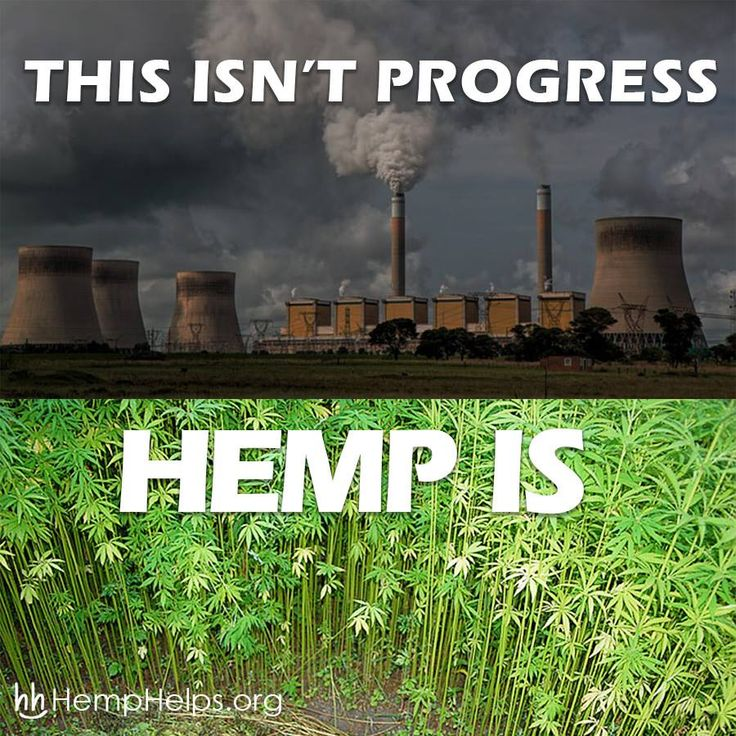 Fossil fuels are one of the main poisons to #Mother #Nature, and the use of these fuels needs to slow down sooner than later. A sustainable alternative that would be able to handle the demand of our energy use is #Hemp!