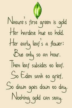 Robert Frost ~ Has been my favorite poet since I was at least 9 years old. This is my fave poem from him thanks to Ponyboy and Johnny :)