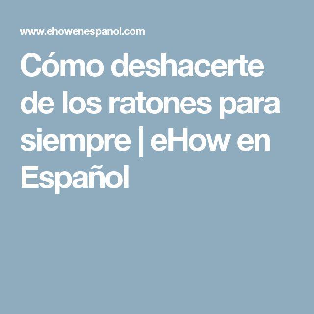 Cómo deshacerte de los ratones para siempre | eHow en Español