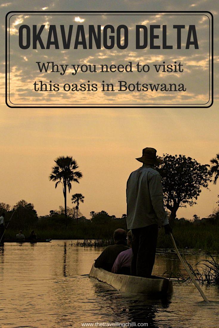 Reasons to visit the Okavango Delta in Botswana | Oasis in the Kalahari desert