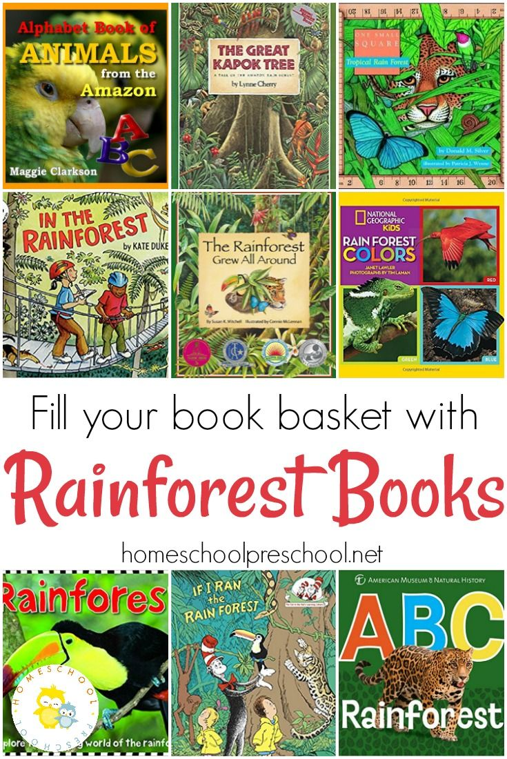 If you've got a child who loves animals or the rainforest, encourage them to learn about rainforest animals with this great collection of picture books.  via @homeschlprek