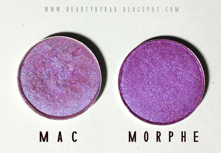 Morphe Brushes Single Eyeshadow Swatches and Review - Beautybyrah