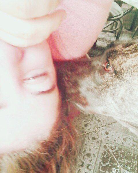 #kiss #beso #best #hug #friend #animal #abrazo #amor #love #photography  #picture #like4like #selfie #sexy #beautiful #summer #sun #beauty #kenia #bebe #baby #landscape #rico #hair #happy #happiness #skin #perfect by agustina_sartori