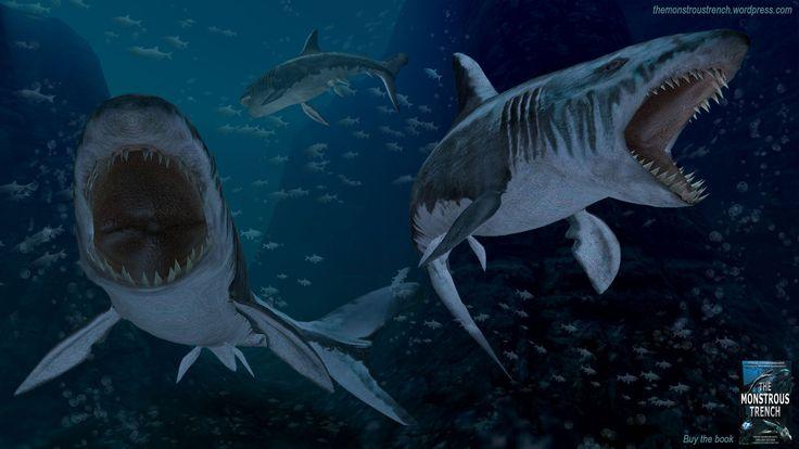 "Two hungry megalodons - an illustration to ""The Monstrous Trench"" deep-sea novel full of sea monsters #megalodon #megalodons #megashark #megasharks #sharks #3dshark"