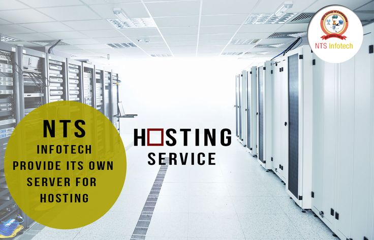 NTS Infotech provide its own server for hosting with better bandwidth . For more detail visit http://www.ntsinfotechindia.com/