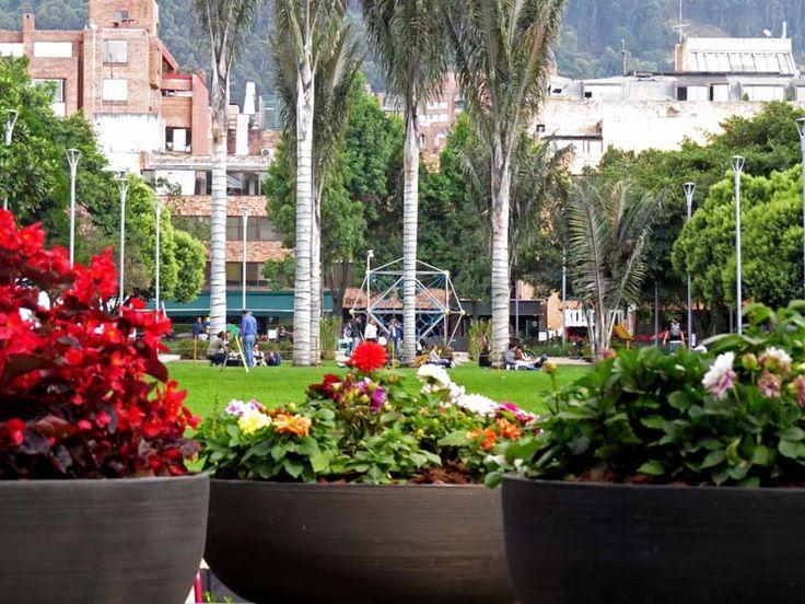 1. El Parque tiene flores pequeñas y palmeras grandes que invitan a quedarse.