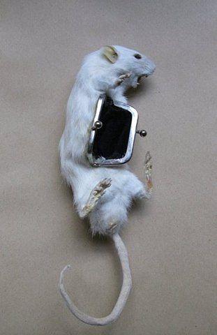 Rat coin purse.