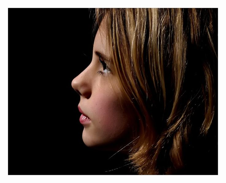 en profil ; hierbij gaat het meestal om de zijkant van een gezicht