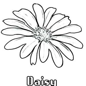 coloring pages letter names daisy - photo#8