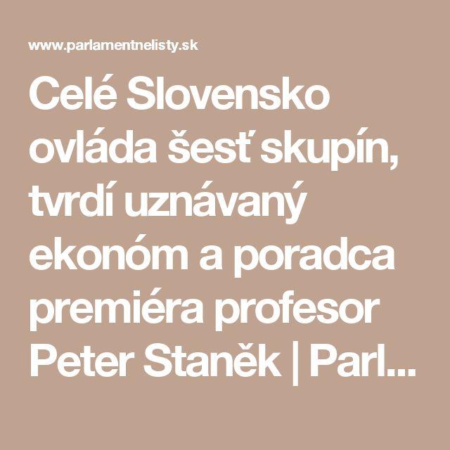 Celé Slovensko ovláda šesť skupín, tvrdí uznávaný ekonóm a poradca premiéra profesor Peter Staněk | ParlamentneListy.sk – politika zo všetkých strán