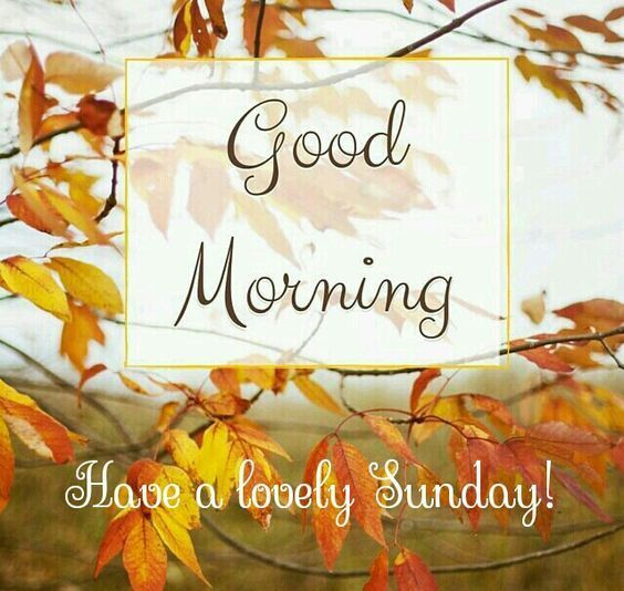 Good Morning Have A Lovely Sunday Autumn Quote