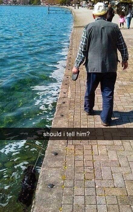 Funny Old Man Walking Dog