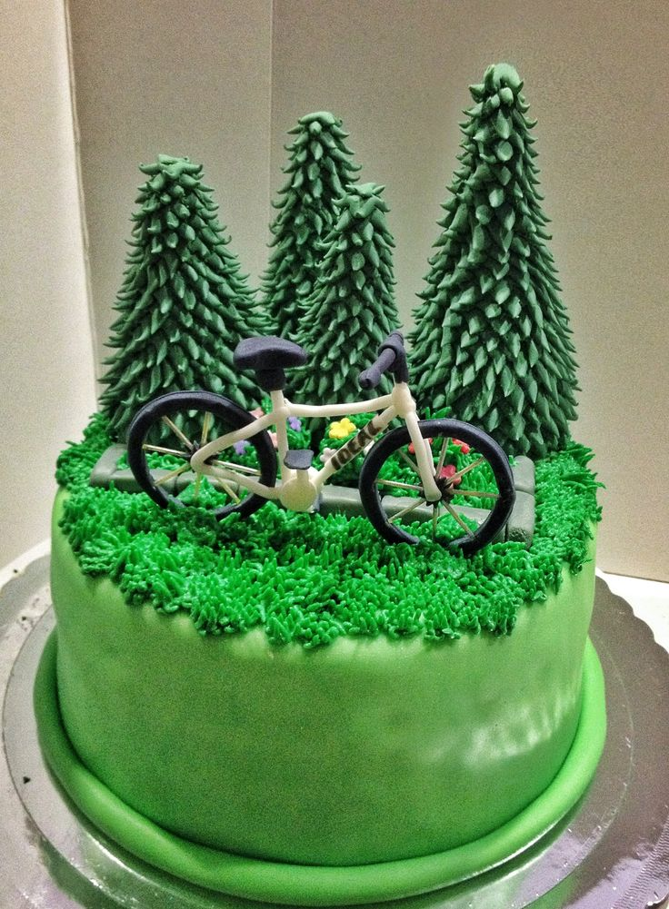 Bike Cake For Bike Lovers Party Cakes Pinterest