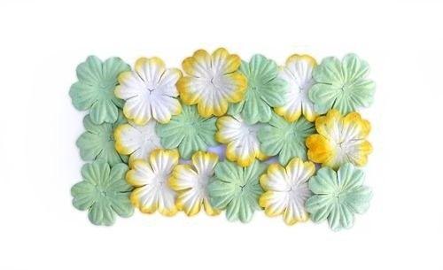 Nieuw bij Knutselparade: 4RT5 Scrapberry's papieren bloemen groen/geel/wit SCB300805 https://knutselparade.nl/nl/versieringen/3449-4rt5-scrapberry-s-papieren-bloemen-groen-geel-wit-scb300805.html   Scrapbook, Scrapbookversieringen, Versieringen, Papieren Decoraties -