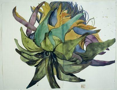 Sarah Graham - Botanical Artist - works on paper. . .beautiful!