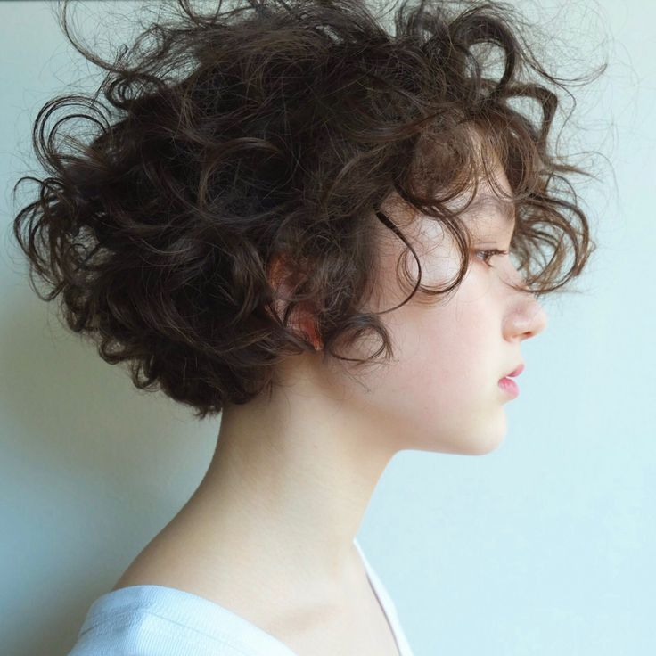 クルクルも新鮮。 頭の丸みを可愛くカット。