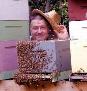 DC Honeybees: Small Cell Bees Available, FatBeeMan Stock. Jack Spirico's guest says this guy is good.