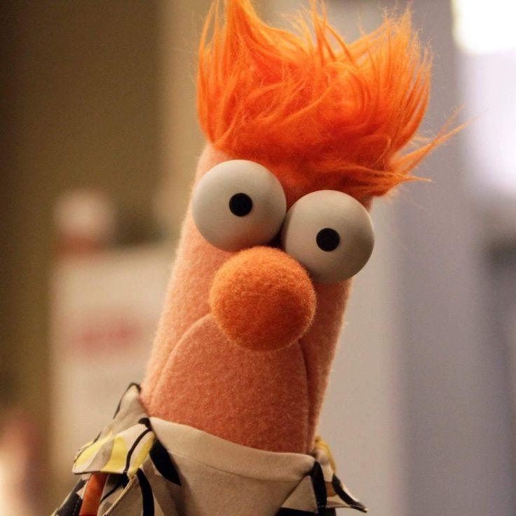 277 Best Muppets Images On Pinterest: 16 Best Beaker Images On Pinterest