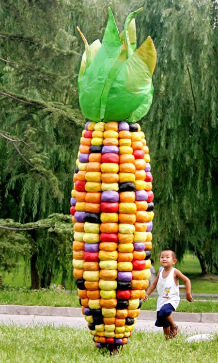 Daily Times - Leading News Resource of Pakistan - Giant ear of corn made from plastic bags