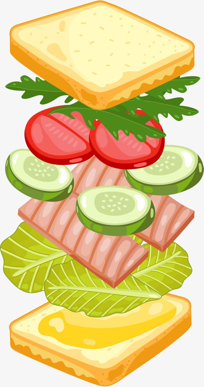 Cartoon Sandwich Material Food Illustration Art Simple Cartoon Sandwich Drawing