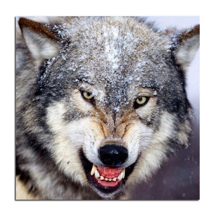Серые волки в снегу 45 x 45 сделай сам вышивка крестом с бриллиантами живопись алмаз мозаика комплекты представить стразы