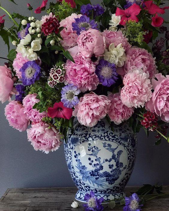 самые красивые цветы в блогах фото другое название