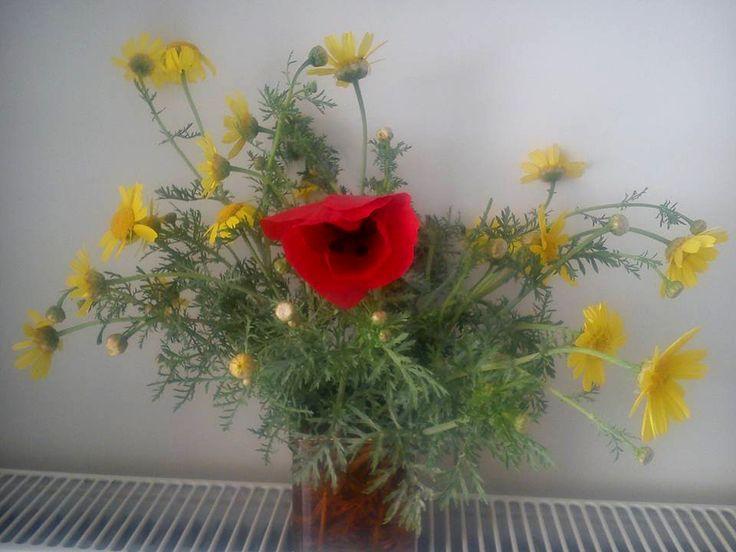 Λουλούδια της φύσης εντός των τοιχών