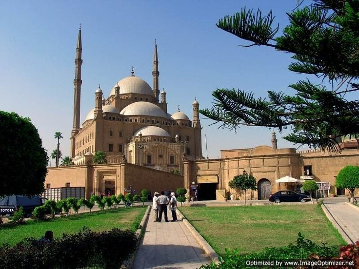 Overnight Tour to Cairo from Alexandria Port Tour to Cairo for 2 days from Alexandria Port to visit Cairo highlights including Giza Pyramids, Saqqara step pyramid, the Egyptian museum, the citadel and Khan EL Khalili Bazaar then back to Alexandria Port http://www.safagashoreexcursions.com/alexandria-port/overnight-tour-to-cairo-from-alexandria-port.html www.safagashoreexcursions.com Whatsapp+201069408877 #Safagaexcursions #Alexandria #Portsaid #Sokhna #Cairo #Pyramids #Luxor #Hurghada #Egypt