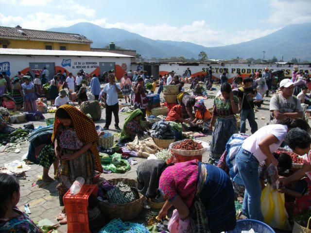 Antigua Food Market