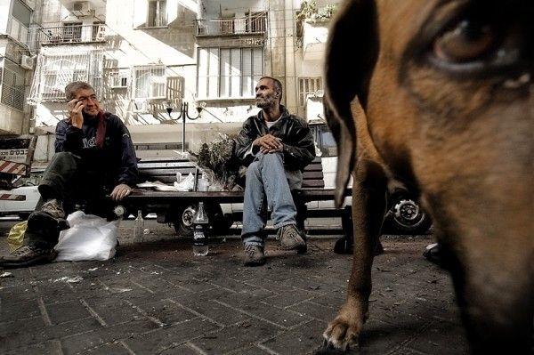 От улыбки до грусти вместе с Гиладом Бенари (Gilad Benari)