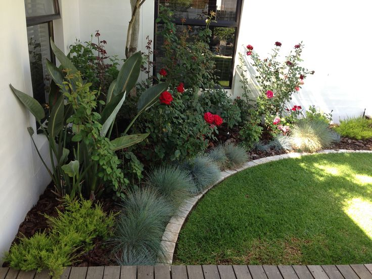 Rose garden corner, useful colours and fragrances. Exterior Design Cape Town