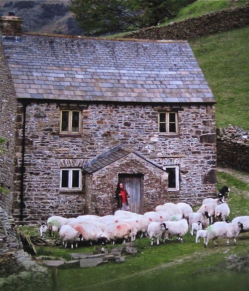 lovely: stone cottage, endless rock walls and fields