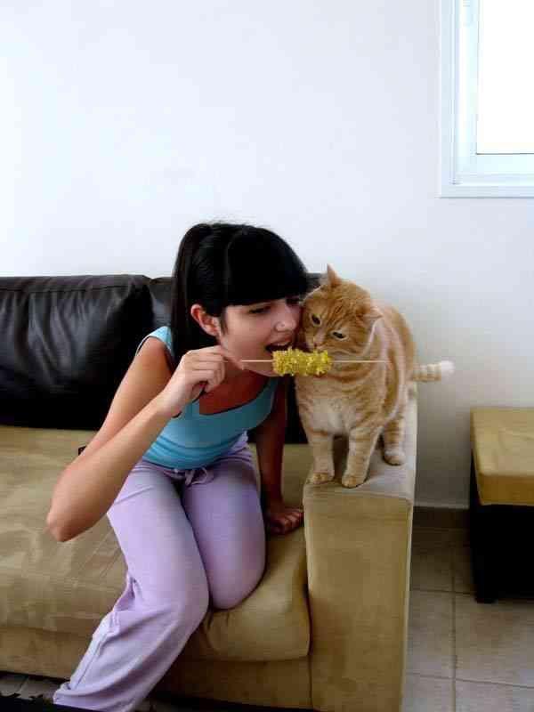 Животные - лучшие друзья девушек