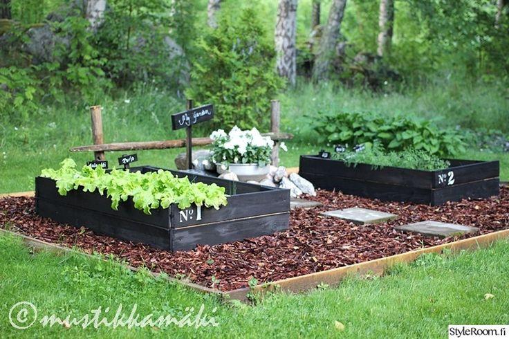 piha,puutarha,kasvatuslaatikot,puulaatikko,istutus,pihakasvit