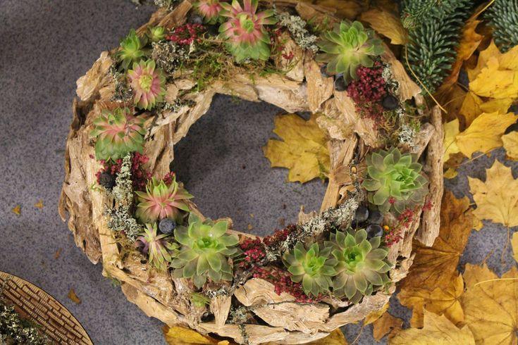 TELERÁNO &DUŠIČKY Spolu s Jankou Vargovou sme pre vás v Teleráne aranžovali krásne dekorácie, vence, srdiečka, sviečky a tekvičky. Predstavili sme viac ako 50 druhov chryzantém. Ďakujeme firme Rymeltrade, Florasis, Kvety Margaréta, Kvety Saintpaulia za spoluprácu.