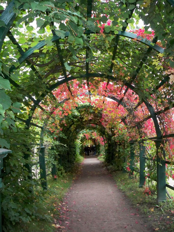 Archway from Peterhoff during the fall; Saint Petersburg, Russia