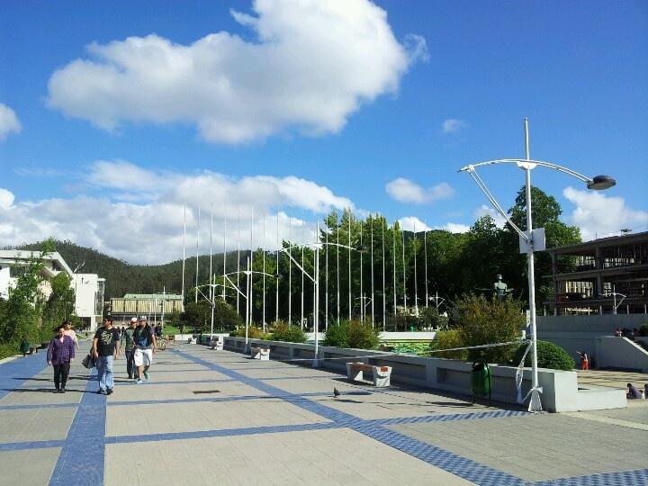 University of Concepcion -chile