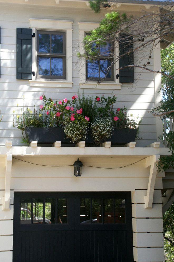 Экзотические растения из жарких тропиков на службе гостеприимства вашего дома