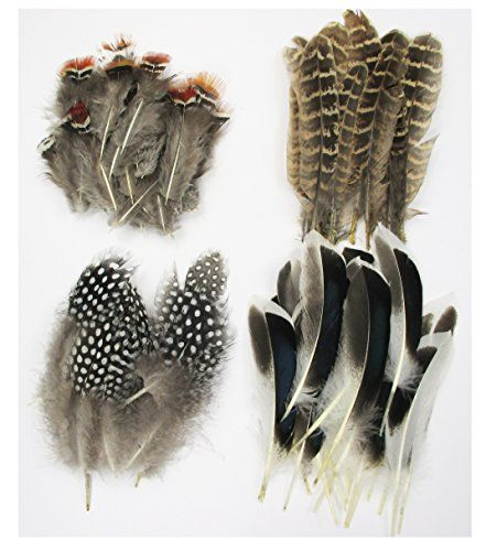 ALL in ONE Assorted Feather for DIY, Craft All In One