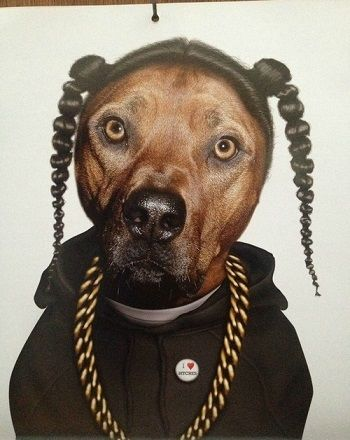Snoop Dog - not sure why this cracks me up, but it does!!