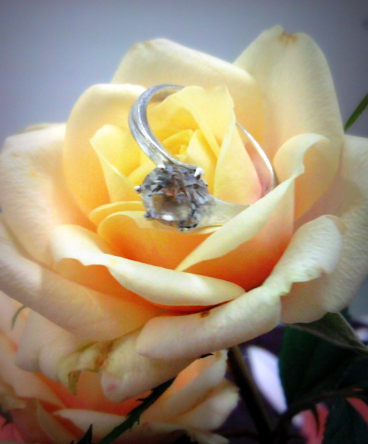 My ring from my Love