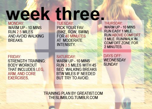 THE SKINNY LITTLE DIARY, Gonna do this to get my running-shape back!
