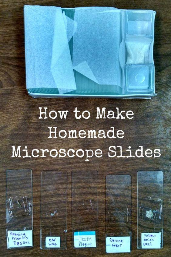 Amazon.com: microscope for kids