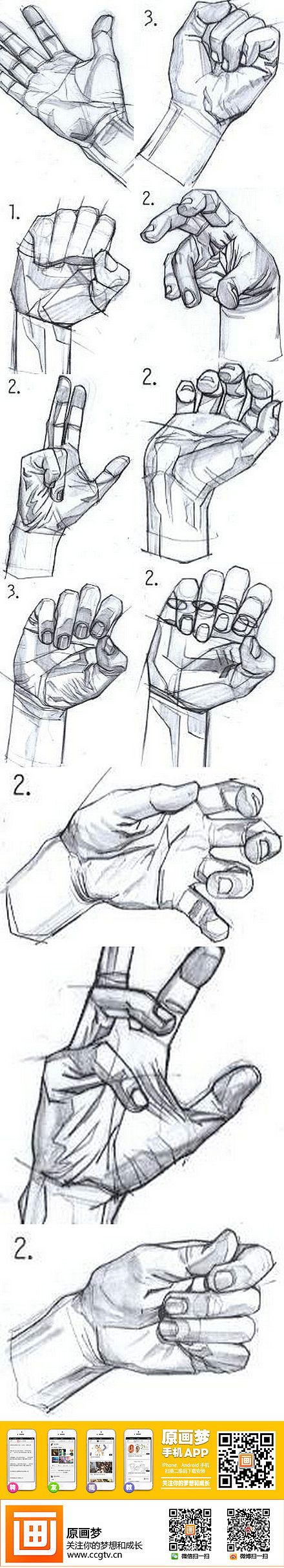 Construction of the hand for drawing.